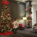 So Many Beautiful Chirstmas Trees Throughout the Hotel - Imagine This Lobby Greeting Your Guest.