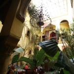 The beauty of the Riad is in the plants and chandelier