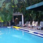 View of the pool from the dining area