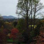 View from restaurant porch during fall color (October 2015)