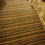 Crumbs in the room upon check-in