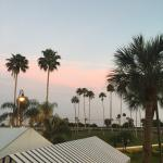 Pink Skies at Twilight to our Delight Bayvista from our balcony at Safety Harbor spa and resort