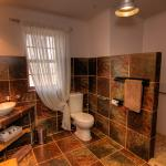 En-suite bathroom with walk-in shower - wheelchair friendly at Karoo View Cottages