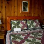 Cozy room with knotty pine walls, and quilts.