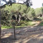 Photo of Luso Aventura Albufeira