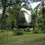 Suital Lodge