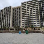 Pinnacle building from the beach