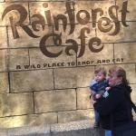 Lunch at the Rainforest Cafe