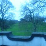 Beautiful view over the park opposite