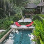 Private pool with adjacent jungle