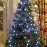 Christmas tree in lounge, even in October!