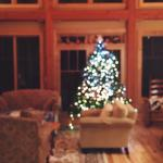 Loved the beautiful Christmas tree in the main living room downstairs.