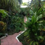 path from room to the restaurant/swimming pool/recetion area