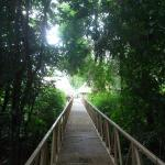 Bridge leading from the clubhouse and dining room to the bird cabanas