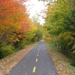 Next to the NB Trails, bike for miles on newly paved trails along the scenic coastline.