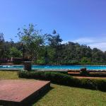 Wild Elephant Eco Friendly Resort