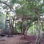 Photo of Marc's Treehouse Lodge