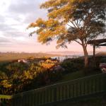 View from patio at sunset