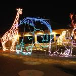 We visited the Phoenix Zoo Lights while visiting