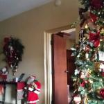 tree and decoration in front room