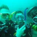 Photo of Dive Asia - Day Trips and PADI Courses