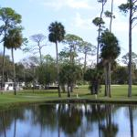 Daytona Beach Golf and Country Club (Municipal) near the hotel