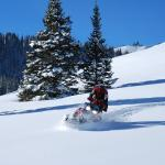 Snowmobiling with Red Pine Adventures