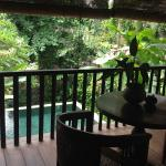 View from deck overlooking private pool