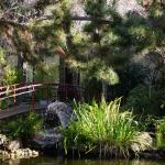 This place is not only a hotel, but also a Japanese style garden.