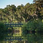 Photo of Montage Palmetto Bluff