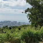 Best views of Honolulu!