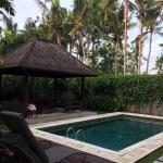 Photo of The Samaya Bali Ubud