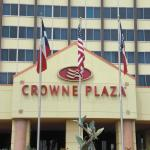 Crowne Plaza Houston Near Reliant - Medical