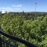 View of Botanic Garden on to Opera house from our balcony