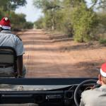Festive caps for Christmas on our first Game Drive