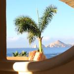 View from the patio towards Cabo San Lucas town