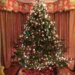 Beautiful Christmas tree with working train and track in one sitting room