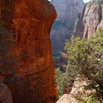 View from trail to Angels Landing