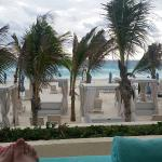 Enjoying our cabana this morning.  For lunch, shrimp tacos at Sea Corner with a Paloma in my han