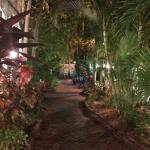 Front walkway of the hotel.