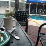 Breakfast with a view. The continental breakfast is served in the pool area, rain or shine.