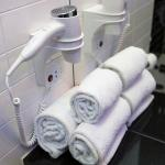 Hairy Dryer & Ample Towels
