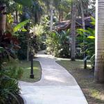Pathway in grounds of hotel.