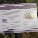 Very informative signage through out the park & gardens