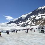 On the Athabasca Glacier at the Columbia Ice Field