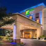 Holiday Inn Express Hotel & Suites Tampa-Anderson