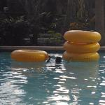 Heated lazy river w/tubes