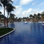 Tropical and Colonial pool areas