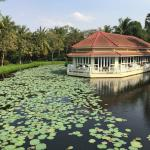French restaurant overlooking the lily pond