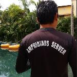 Who doesn't love an amphibious server that gets in the water in a lazy river to bring you your d